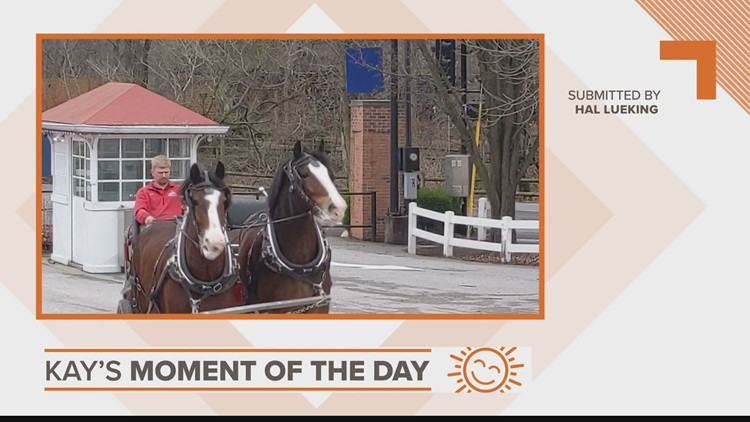 Kay's Moment of the Day: March 23