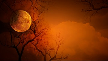 It's a full moon Friday the 13th and the next one won't happen for 30 years!