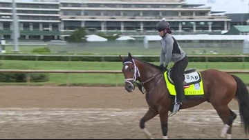 One-eyed horse to run in Derby 143