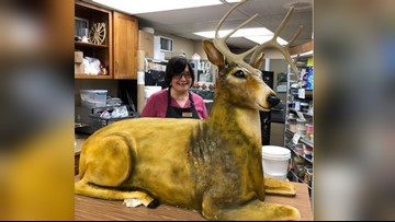 Pennsylvania bakery creates shockingly realistic deer cake